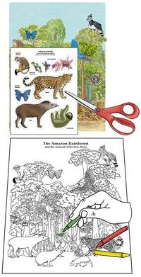 Learn about Animals and Habitats with simple, fun activities from Exploringnature.org Black And White Posters, Scotch Tape, Poster Colour, Amazon Rainforest, Biomes, One Color, Fun Activities, Colored Pencils, Habitats