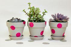 Vasos de barro DIY Bolinhas retrô