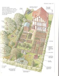 100x50' take on small lot farming.. from the book  The Practical Homestead: The…