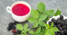 Chá de folha de amora tem 22 vezes mais concentração de cálcio e pode substituir o leite de vaca. - Receitas e Dicas Caseira