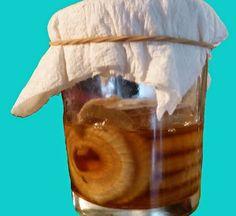 """Cura pela Natureza.com.br: Xarope """"sereno de cebola"""" é otimo contra tosse, bronquite e pneumonia"""