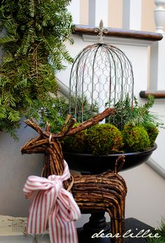 Urn with greens, moss and a wire cloche ...