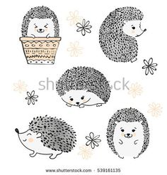 Find Set Cute Watercolor Hedgehogs Isolate On stock images in HD and millions of other royalty-free stock photos, illustrations and vectors in the Shutterstock collection. Thousands of new, high-quality pictures added every day. Hedgehog Art, Hedgehog Tattoo, Hedgehog Drawing, Cute Hedgehog, Hedgehog Illustration, Cute Illustration, Watercolor Illustration, Folk Art Flowers, Flower Art