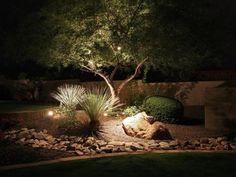 Photo of Brown Asian Outdoor project in Scottsdale, AZ by Desert Designer Landscape & Development