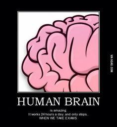 pikiran manusia