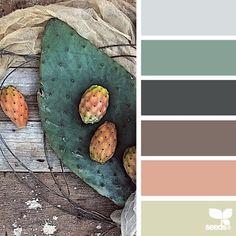 A imagem de hoje inspiração para {pêra espinhosa paleta} é pormikefanfulli ... obrigado, Michele, por outro fresco + #SeedsColor inspirador share imagem!