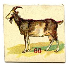 Free Vintage Clip Art - Donkey, Goat & Goose - The Graphics Fairy