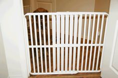 Rover Company »  Plastic Tall Pet Gates