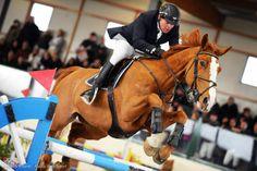 Ad Arezzo riparte l'Equestrian Centre. - http://www.toscananews.net/home/ad-arezzo-riparte-lequestrian-centre/