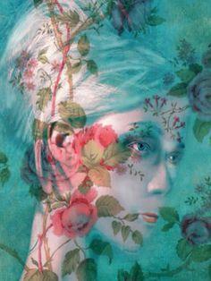 In Bloom; Sarah Jarrett