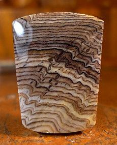 This is a cab of Hells Canyon Petrified Wood. Minerals And Gemstones, Raw Gemstones, Crystals Minerals, Rocks And Minerals, Cool Rocks, Beautiful Rocks, Rock Jewelry, Petrified Wood, Rocks And Gems