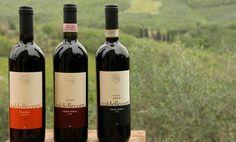 Val delle Corti, Chianti Top Ten Chianti from the Guardian
