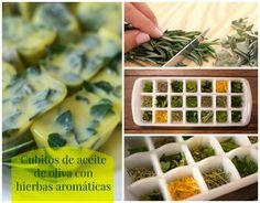 Cubitos de aceite de oliva con hierbas aromáticas