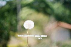 poeme_se_followthecolours_04