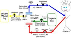 continuous veno-venous hemodialysis (cvvhd)