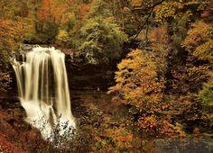 Jesień, Las, Wodospad, Drzewa