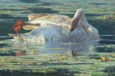 """Clyde Aspevig, """"Preening Swan,"""" Oil on linen 20"""" x 30"""" SOLD (Signature Artist) (105th Annual Gold Medal Exhibition, April 3-24, 2016; Autry Museum of the American West) #cacgoldmedal #105gm #artevents #theAutry"""