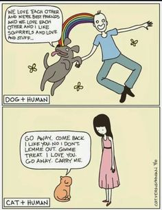Dog people vs. Cat people