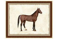 Horse Print I on OneKingsLane.com