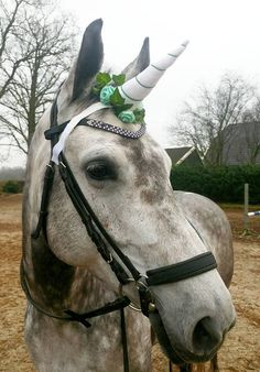 Bekijk dit items in mijn Etsy shop https://www.etsy.com/nl/listing/579106942/wit-eenhoorn-hoorn-unicorn-horn-white
