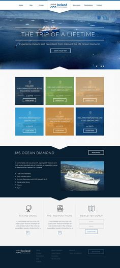 Iceland ProTravel is a travel agency in Iceland that has recently started to offer cruises around Iceland and Greenland. Pepperplane created the designs.