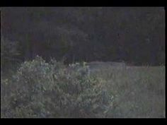 Most Authentic ghost footage of all time??? Ghsot captured on the Gettysburg battlefied