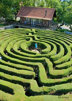 Hedge maze, Germany. Very busy. The reward is a vantage point at the centre to see the maze.