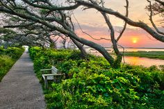 Sunset at Pea Island Wildlife Refuge, Outer Banks, N.C.