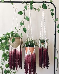 Fringey dip-dyed plant hangers, macrame You are in the right place about triple macrame plant hanger Macrame Design, Macrame Art, Macrame Projects, Micro Macrame, Macrame Plant Holder, Macrame Plant Hangers, Crochet Plant Hanger, Wall Plant Hanger, Plant Holders