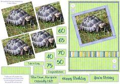 Tortoise slow down pyramid Birthday retirement Card on Craftsuprint - Add To Basket!