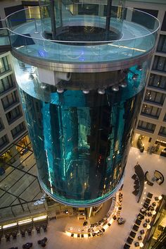 AquaDom, Berlin, Germany - Largest aquarium in the world, 25 meters high, 11 meters in diameter, 900,000 liters of seawater, 2600 fishes of 56 species.  With elevator in the center it is situated in the Radisson SAS Hotel.