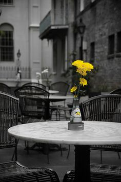 Yellow Flowers at New Orleans Open Cafe[Explored] - Gelb Splash Photography, Color Photography, Black And White Photography, Travel Photography, Black And White Pictures, Black And White Colour, Black N Yellow, Color Yellow, Color Splash Photo