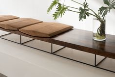 Rosewood bench by Jorge Zalszupin, vase with a tropical plant: Philodendron xanadu