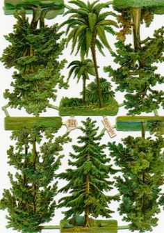 Victorian Die Cut Scrap Tree Sheet Vintage Illustration, Botanical Illustration, Decoupage, Label Paper, Camping Crafts, Environmental Art, Paper Models, Vintage Images, Trees To Plant