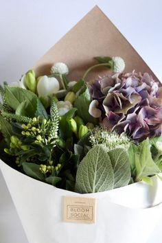 bloom - bouquet of beautiful purple & green flowers // floral love