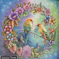 Take a peek at this great artwork on Johanna Basford's Colouring Gallery! Colorful Art, Coloured Pencils, Coloring Book Art, Art, Color Inspiration, Color Pencil Art, Johanna Basford Coloring, Color