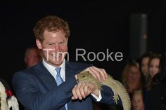 Prince Harry meets Henry the Tuatara at Invercargill Airport don't call him a lizard apparently #RoyalVisitNZ May 2015.