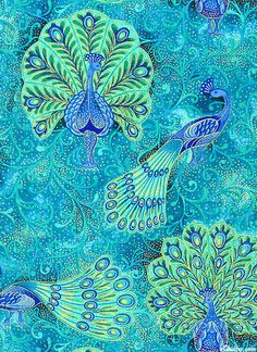 Peacock Parade - Birds Of A Feather - Turquoise/Gold