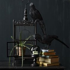 Greet your #Halloween guests with a decorative bird cage from #MarthaStewartLiving in your entryway.