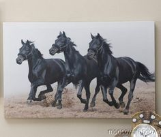 New Black White Galloping Horses Print Western Wall Decor Picture Beach Art | eBay