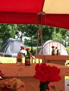 Festival Bruiloft. Wedding.