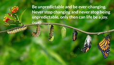 Be unpredictable and be ever-changing. Never stop changing and never stop being unpredictable, only then can life be a joy.  OSHO  #unpredictable #changing #being #life #joy #osho