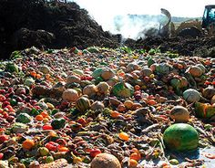 A new report from the Food Waste Reduction Alliance highlights new ways the food industry may divert waste from landfills. French Supermarkets, Waste Reduction, Ways To Recycle, Reuse, Edible Food, Food Out, Sustainable Development, Food Waste, Plant Based Diet