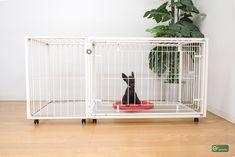 レギュラーサイズのトイレを使う小型犬にオススメ。トイレ別のおしゃれなデザインケージ Magazine Rack, Storage, Dogs, Furniture, Home Decor, Products, Purse Storage, Decoration Home, Room Decor
