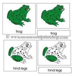 Montessori Printables, some free