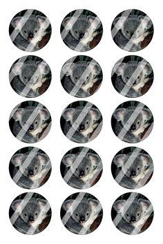 "Koala Bear Bottle Cap 1"" Circle Images Sheet #B28 (instant download or pre cut)"