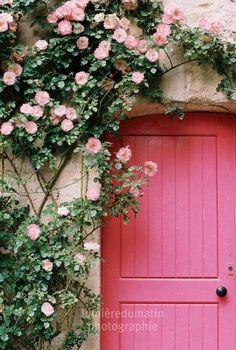French pink door