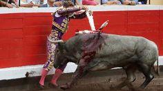 Diego Urdiales y Manuel Escribano, qué gran tarde de toros | Marca.com