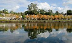 Reflejos de un otoño 😍 Pontevedra