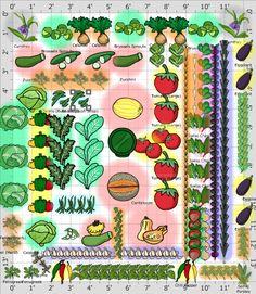 Garden Plan - vegetable plot